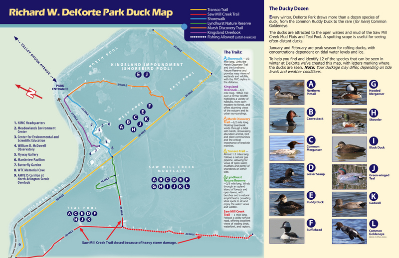 Image result for dekorte park trail map